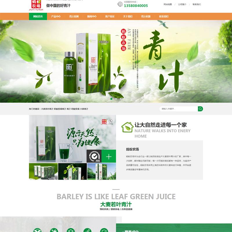 国际贸易网站案例